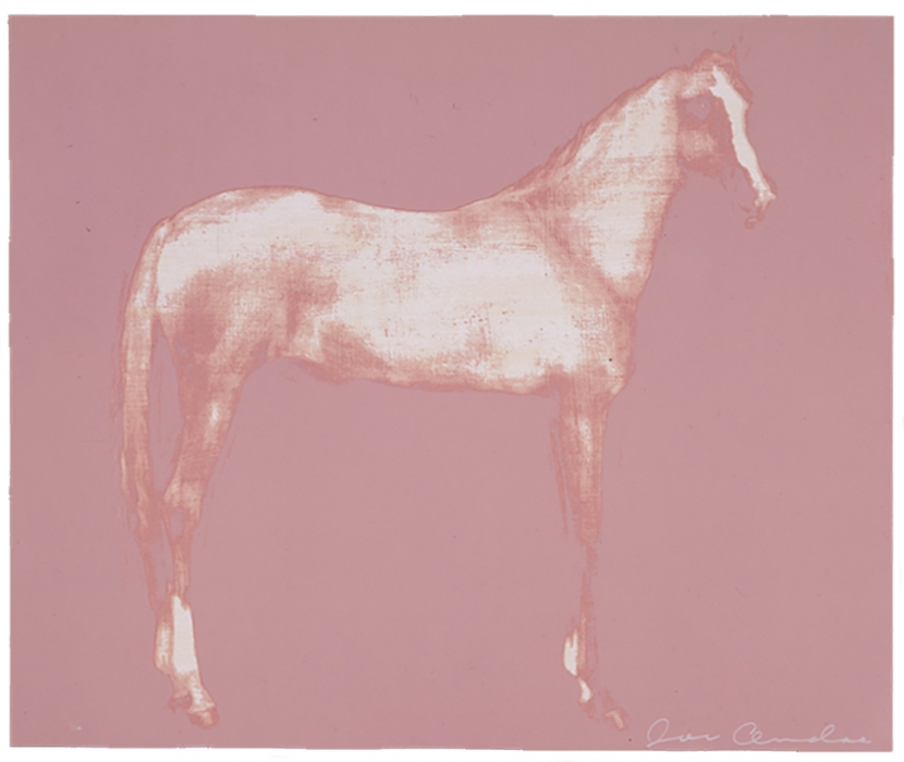 Horse X 12 (Pink)