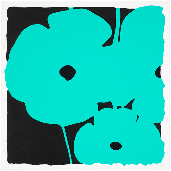 Poppies, June 5, 2011 (Aqua)