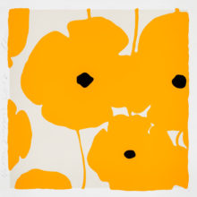 Donald Sultan, Yellow Poppies 2018