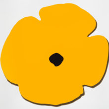 Yellow Wall Poppy by Donald Sultan