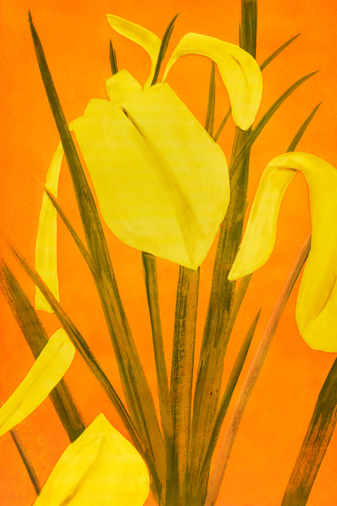 Yellow Flags 4 by Alex Katz