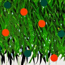 Mimosa with Orange and Green, 2021